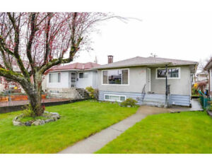 4 bed 2 bath 2 kitchens -  entire house with in-law suite