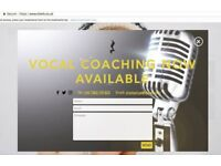 Vocal and Performance Coaching in Bristol