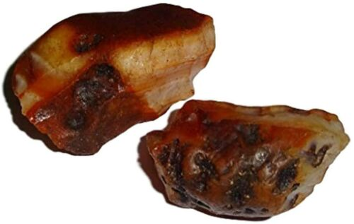 Raw A-Grade Fire Agate from Mexico Healing Crystal Gemstone Specimens 2pc