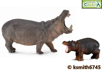 NEW CollectA HIPPOPOTAMUS /& CALF solid plastic toy wild zoo animal HIPPO