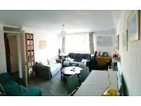Large and Beautiful 4 Bedroom Flat with Terrace - Well Located - Near Tower Bridge Road