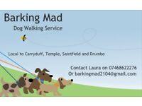 Barking Mad Dog Walking Service