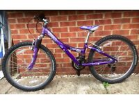 Kid's Trek MT220 bike (for girl) 12 inch frame (very good condition)