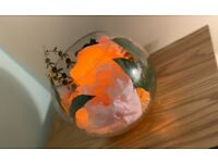 Flower Fishbowl Centrepieces