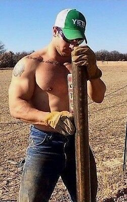 Shirtless Male Beefcake Country Farm Muscular Beefy Hunk Working PHOTO 4X6 F924