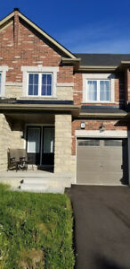 3 Bedroom, 4 Washroom, Freehold Townhome for Sale