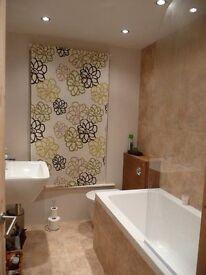 Stunning 1 bedroom in lewisham