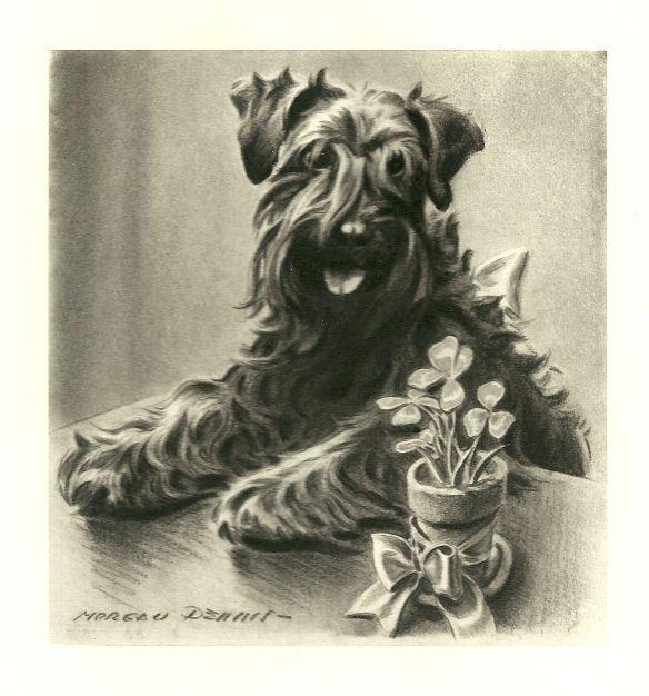 Kerry Blue Terrier - Vintage Dog Print - 1947 M. Dennis