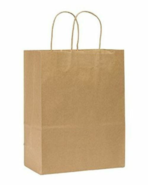 "Rope Handle Paper Shopping Bags Missy 10x5x13"" Natural Kraft (250/Case)"
