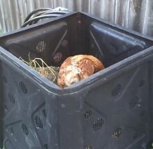 Compost correcting service Fairfield Brisbane South West Preview
