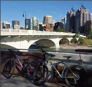 2016 Giant Talon 4 and Giant LIV Tempt 4 Stolen in Marda Loop