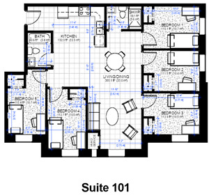 Reduced Price - 4 Month Spring Term Sublet Waterloo, 202 Lester