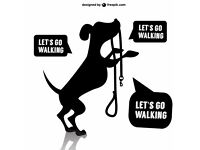 Dog walker for your dog! Dog walking, dog sitting