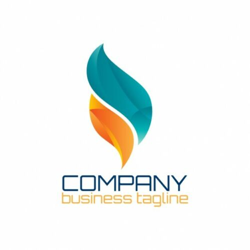 I will design custom Logo for your requirement