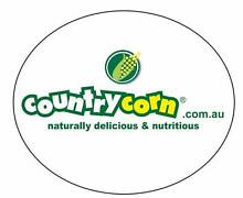 Country Corn - School Fete / Spring Fest Catering Blacktown Blacktown Area Preview