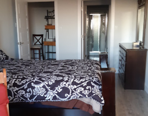 Looking for Roommate for Luxurious Living On Mount Hope