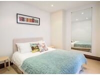 Large 2 double bedroom flat with garden Pimlico sw1v