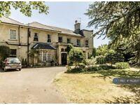 2 bedroom flat in Tankerville, Kingston Upon Thames, KT2 (2 bed) (#1163807)