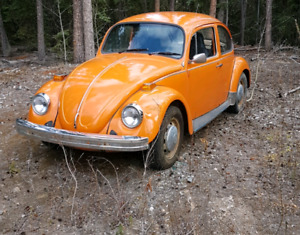 1974 Beatle for sale