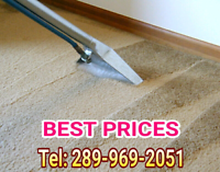 CARPET & UPHOLSTERY CLEANING TODAY? NO PROBLEM! ☎ 289 969 2051