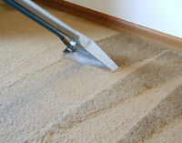 Fantastic Deep Steam Carpet Cleaning Services. THE BEST PRICES.