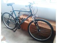 Raleigh Mountain Bike > BARGAIN £28 !!