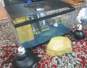 Aquarium, filter and other accessories 80$