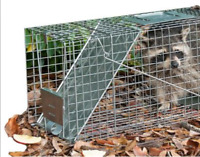 Humane Wildlife Removal Service
