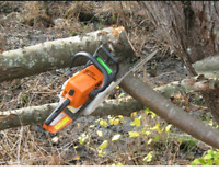 Experienced chainsaw operator wanted
