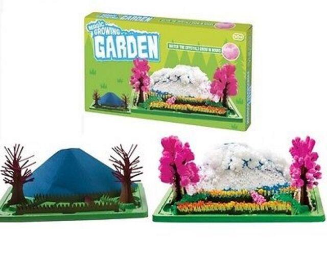 Magic Growing Crystal Garden Beautiful Desktop Flowers Unique Gift 01918
