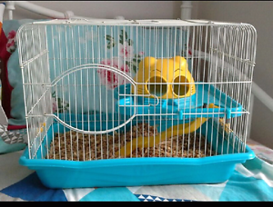 Large Mouse Cage Latrobe Latrobe Area Preview