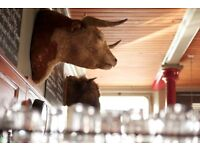 Waiting Staff needed for the Bull and Last from £10 per hour - Kentish Town