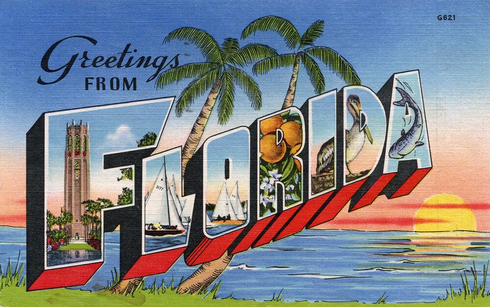 Fruzies Florida Boutique