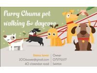 Furry chums pet walking & boarding