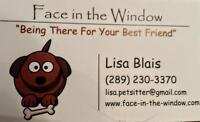 Face In The Window Pet Sitting Services