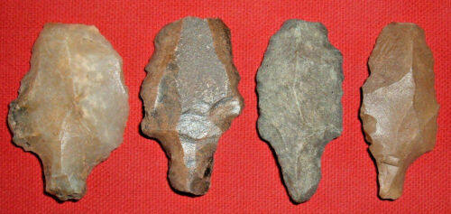(4) Aterian Early Man Points (30K-100K BP), Prehistoric African Artifacts