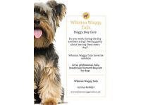Doggy Daycare and Home Boarding Services - Rotherham