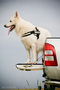 Dog Harnesses - Easy to fit and adjustable Dog harnesses Kitchener / Waterloo Kitchener Area image 5