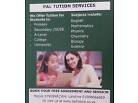 Tutoring GCSE and A-Level Maths, Physics, Chemistry, Biology