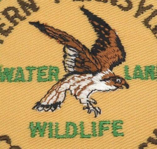 Vintage Patch Hawk Western Pennsylvania Conservancy Water Land and Wildlife bird