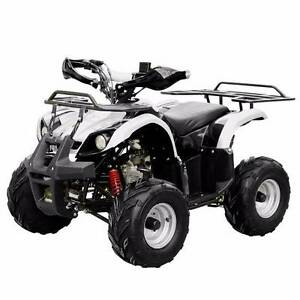 125 Quad Bike Suit Teen/Adult Automatic with Reverse in stock Wingfield Port Adelaide Area Preview