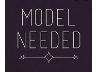 Model needed