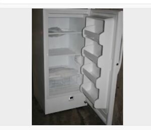 Stand up full size freezer