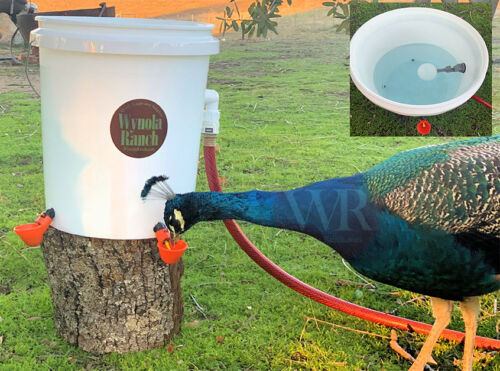 Automatic Drinker Bucket KIT,Cups,Hose Adapter, Float Valve,chicken,quail,turkey