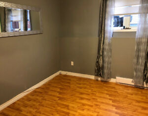 2 bedroom basement apartment in great location