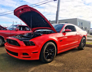 2014 Ford Mustang GT Premium Coupe | MUST SEE!