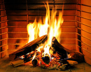 Stove length--cut split seasoned firewood  PICK UP ONLY