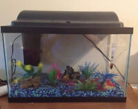 10 gallon fish tank - all accessories included