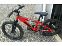 Boys Raleigh alloy frame mountain bike