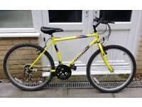 Gents Reckless Apollo Mountain Bike 16 inch FRAME- Cheap Great Bike